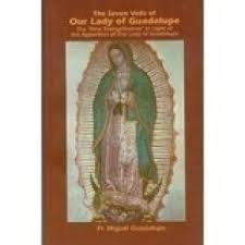 The Seven Veils of Our Lady Guadalupe / Miguel Guadalupe