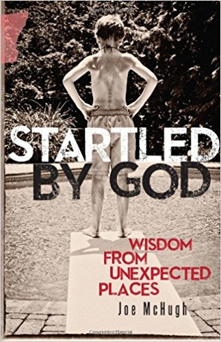 Startled by God: Wisdom from Unexpected Places / Joe McHugh