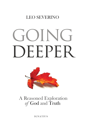Going Deeper How Thinking about Ordinary Experience Leads Us to God /Leo Severino