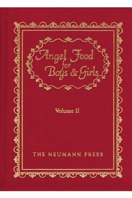 Angel Food for Boys and Girls Volume 2 /Rev Fr Gerald T Brennan