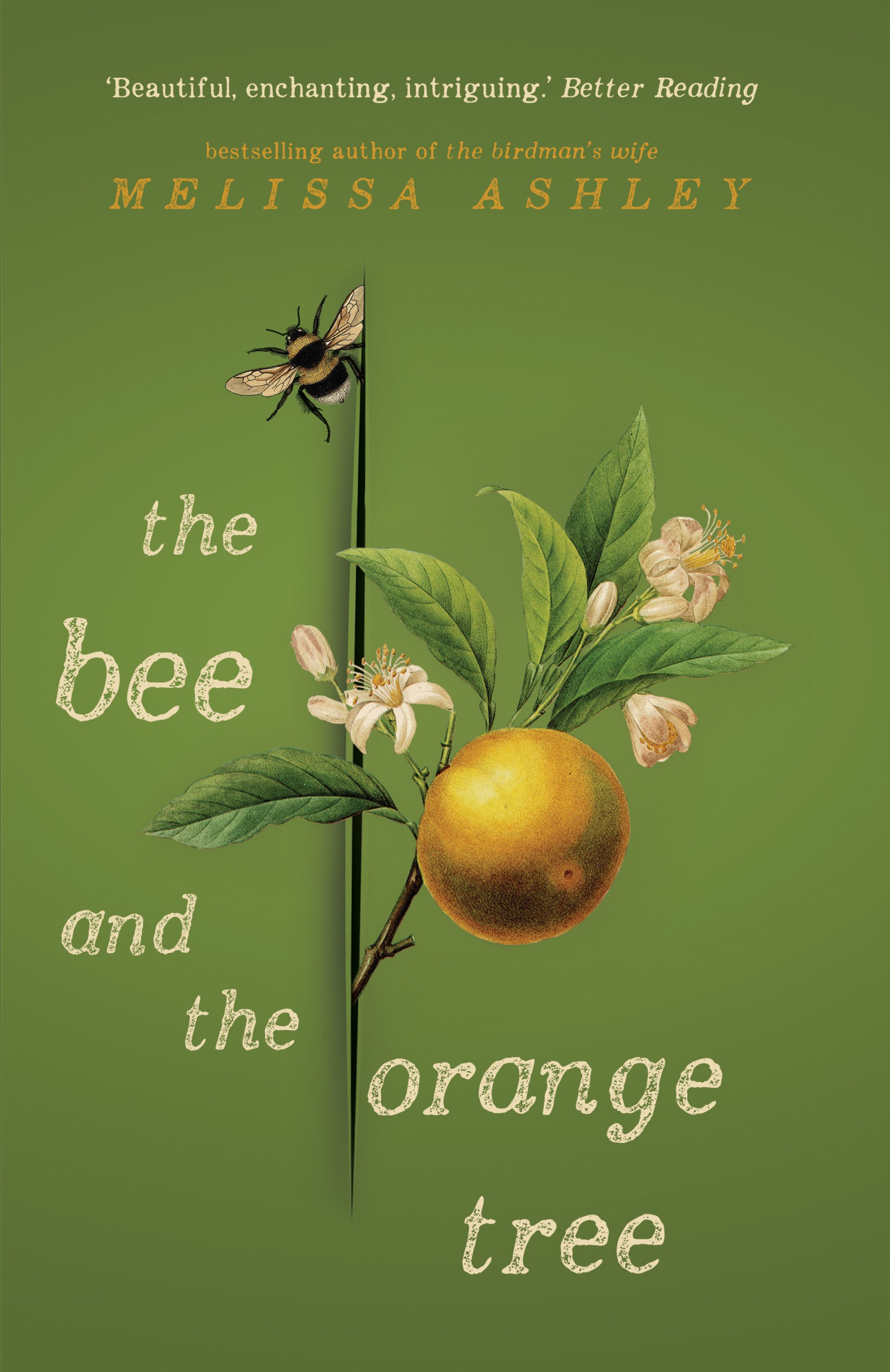The Bee and the Orange Tree / Melissa Ashley