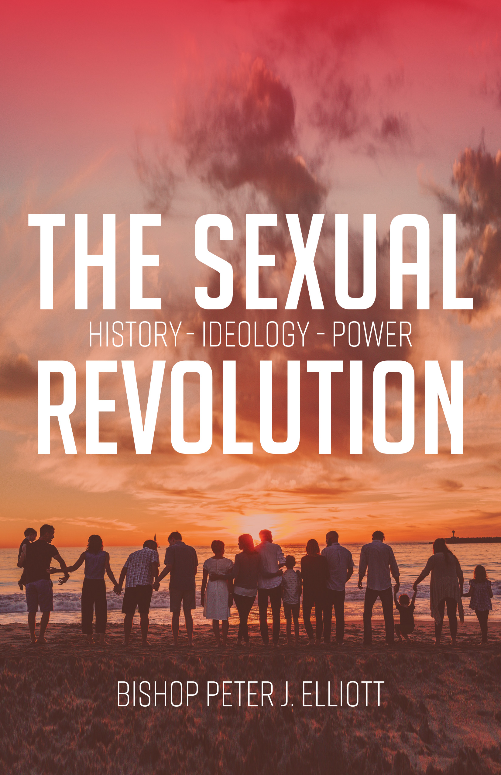 The Sexual Revolution  History Ideology Power / Bishop Peter J Elliott
